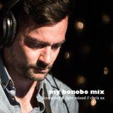 My  Bonobo  mix