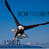 How to Stay Fly