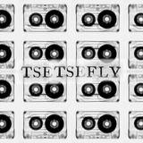 Tse Tse Fly - 7th September 2016