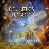 FLY PSY #2 (Dancing nebulae)