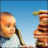 Protein Sandwich