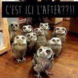 C'est l'after!