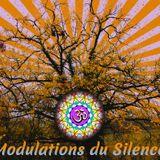 Modulations_du_Silence_1