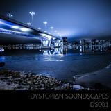 DS001