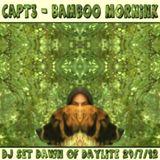 dj pi-rated - bamboo mornink