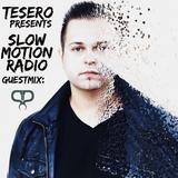 Tesero Presents: Slow Motion Radio #8 Guestmix: Phandelic