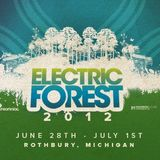 CMD Records at Electric Forest@Forest Stage June 29th