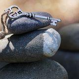 Tutoria   #10 - Estudo sobre as quatro nobres verdades - Equanimidade: Como simplificar a vida?