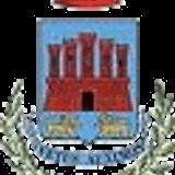 Consiglio Comunale del 31 Luglio 2014
