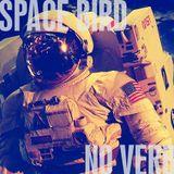 SpaceBirdNoVerb
