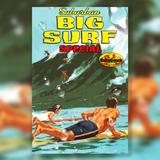 Suburban Hi-Fi's Big Surf Special