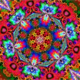 The Psychedelic Shed Radio Show 8