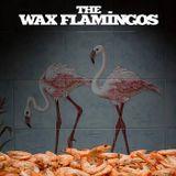 Especial Bandas - The Wax Flamingos - 05 a 10Out