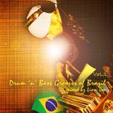 Drum n Bass Grooves Of Brazil vol.2. (Only Vinyl)