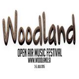 WOODLAND Pristava 2015 DJ Contest - EDM: Far Ahead
