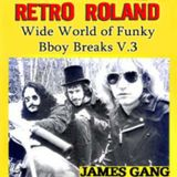 RETRO ROLAND - WIDE-WORLD OF FUNKY BBOY BREAKS V.3 - JAN, 2012