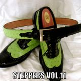 Steppers Vol.11