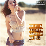 Yankee's House & Electro MashUp #22 (2013)