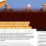 Erhard Crome von der Rosa-Luxemburg-Stiftung verharmlost die AfD