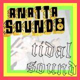 Anatta Sound Meets Tidal Sound - Reggae/Dub/Steppas Vinyl Selection