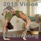 2018 Vision