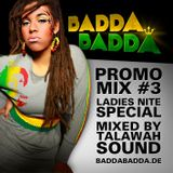 Badda Badda promo mix #3 (Ladies Nite Edition)