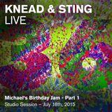 Knead&Sting Live - Michael's Birthday Jam (Minimal Techno), Summer 2015