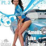 2012_DJ Kasir - Smells Like Summer Pt. 3
