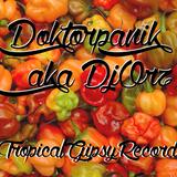 Doktorpanik aka DjOrz - Electro Global Vinyl Mix 2016