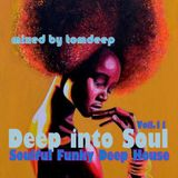 Deep into Soul Vol.11 ( Soulful Funky Deep House)