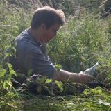 Ed Sears on Permaculture Research