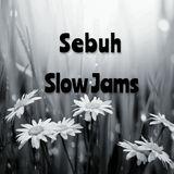 Sebuh - Slow Jams