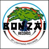 DJ MAZZLETOV - BONZAÏ PROMO MIX :D