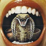 Electrique Avenue - Le Serpent Qui Dance