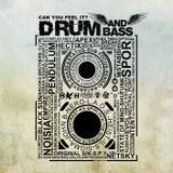 SkInY - Summer Bass [DNB]