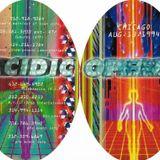 Jimmy Crash (Sonic Groove) @ Acidic Opera, Chicago (1994)