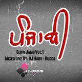 Panjabi Slow Jams - DJ Harv - LIVE MIX - E3UK Podcast
