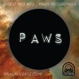 Guest Mix #02 - PAWS Recordings