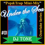 Under the Sea- Overlake I Mini-Mix