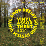 DSS Vinyl Shop — Assortment #010