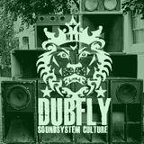 Dubfly: Three