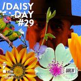 D-aisy Day // Timmerman X Darlin #29
