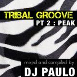 DJ PAULO-TRIBAL GROOVE Pt 2 (PEAK) Spring 2018