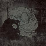 OLI VIER 195