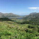 Tess Gell - Emerald Isle
