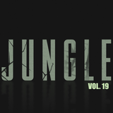 JUNGLE CLASSIC'S (VOL. 19) (DJ DU SET)