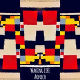 """AONECO """"WAKING LIFE"""" : Mix By DJ NAO-K"""