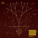 ROOTS #003
