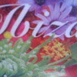 D'eivissa'12 isla blanca,IBIZA set 4 (summer house)
