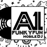 A1 Funky Fun - Wedding Promo